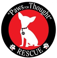 Paws for thought rescue